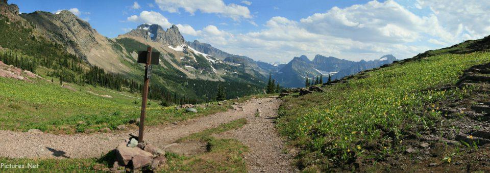 Glacier National Park Picture Tours