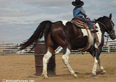 61804 Alzada Rode cowboy_MontanaPictures_Net