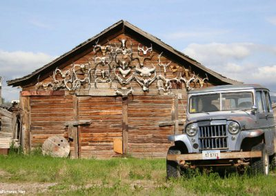 62106 wss jeep antlers_MontanaPictures_Net