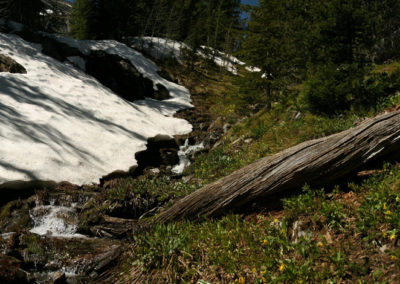 62616 pintler snow log pano_MontanaPictures_Net