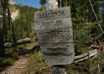 62616 pintler wilderness 4306 sign _MontanaPictures_Net