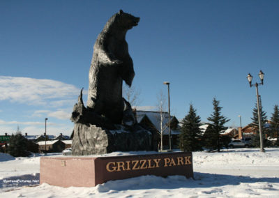 113014 west yellowstone 0144 grizzley_MontanaPictures_Net