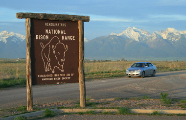 51708 bison sign 4013 car_MontanaPictures_Net_BUTTON