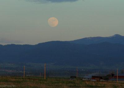 51808 Charlo moon 2219_MontanaPictures_Net
