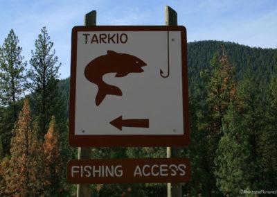 92510 alberton 0446 tarkio fish sign_MontanaPictures_Net