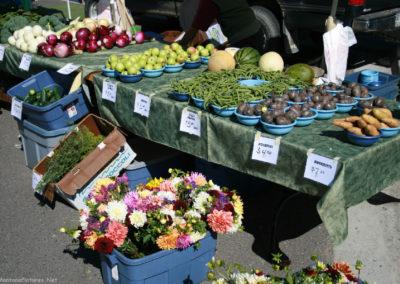92510 missoula market 9278 string beans_MontanaPictures_Net