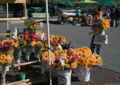 92510 missoula market train 9253 yellow flower_MontanaPictures_Net