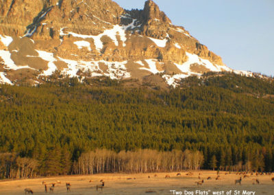 41903 glacier two dog flats_MontanaPictures_Net