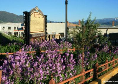 62708 finlen flower butte sign 9237_MontanaPictures_Net