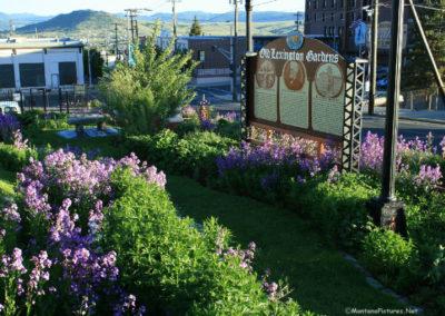 62708 finlen flower lex garden 9256 sign_MontanaPictures_Net