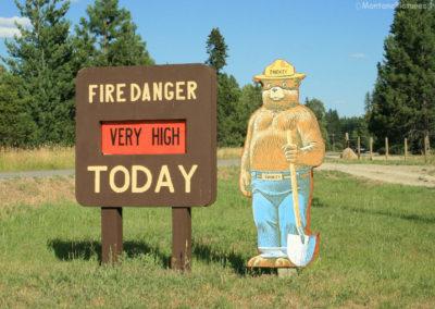 72108 heron smokey 4784_MontanaPictures_Net