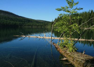 72108 kintla lake am snag 8841_MontanaPictures_Net
