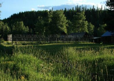 72208 border road deer fence 8697_MontanaPictures_Net