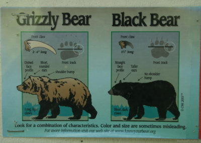 72598 quartz bear ID 9525 single165_CR