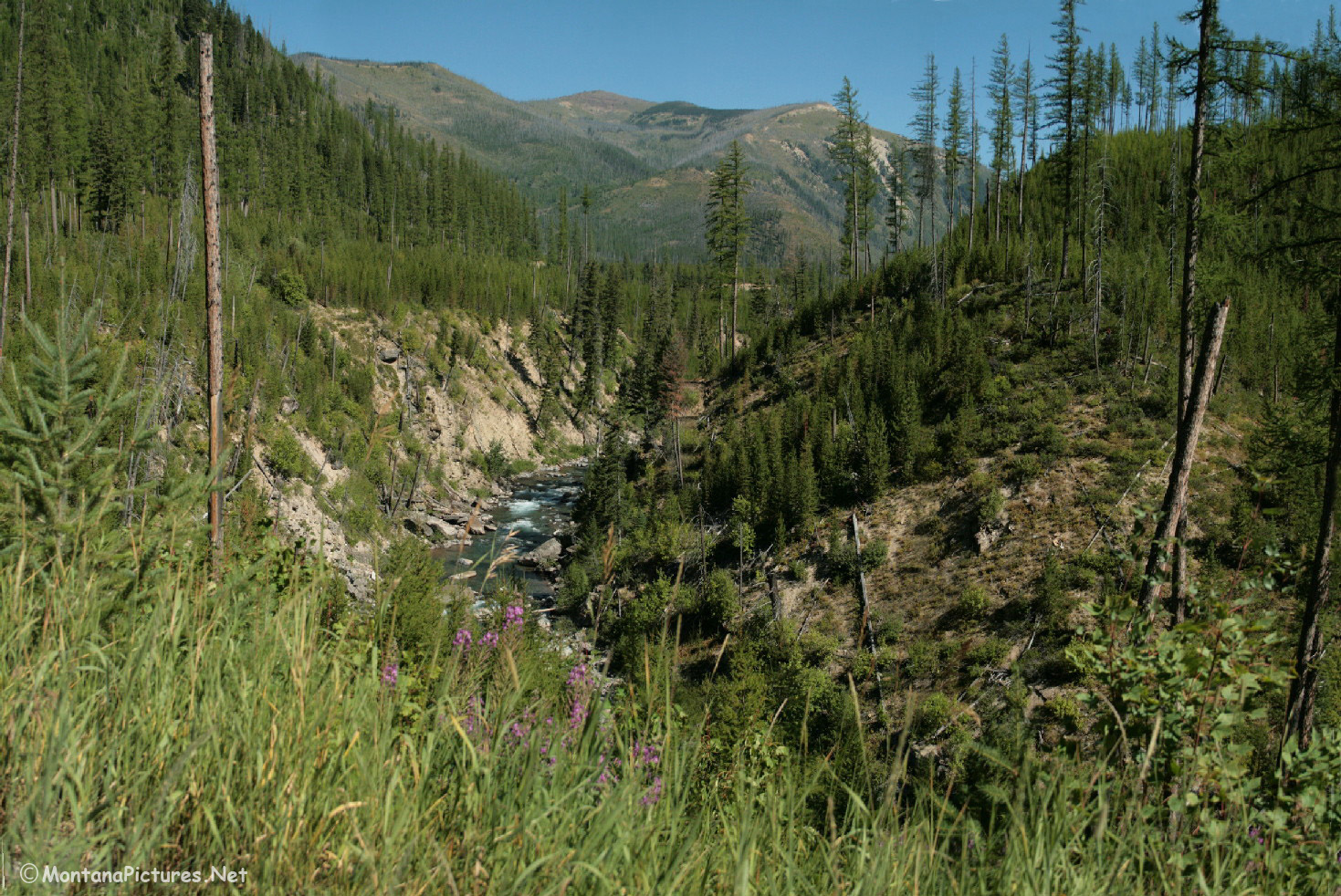 Bob Marshall Wilderness Foundation