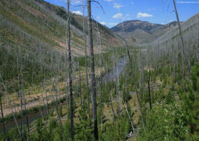 82111 danaher return burn 3264 valley _MontanaPictures_Net