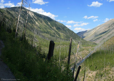 82111 danaher return trail 1sr look burn 3286 single_MontanaPictures_Net