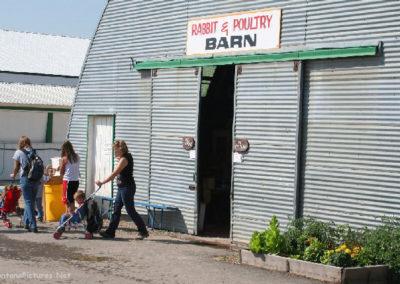 81706 kalispell rabbit barn _MontanaPictures_Net