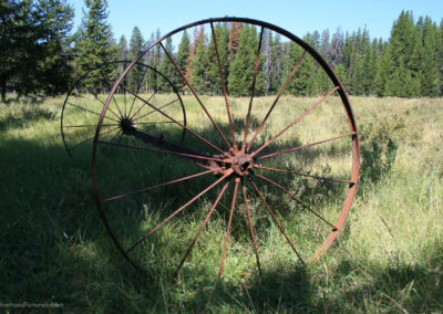 82111 danaher med 2662 mower wheel_MontanaPictures_Net