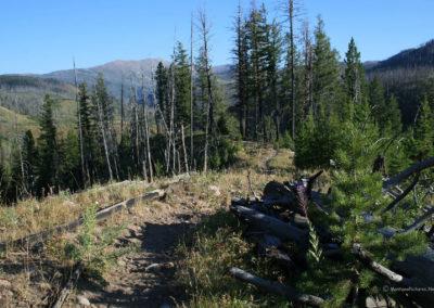 82111 danaher return bob climb 3119 ridge_MontanaPictures_Net