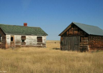 91708 buffalo home door 4955_MontanaPictures_Net