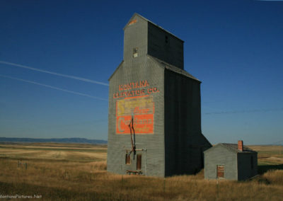 91708 buffalo straw elevator 4815_MontanaPictures_Net