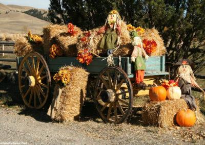 101517 little blackfoot wagon 0247_MontanaPictures_Net