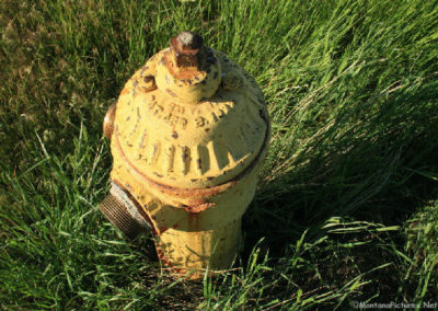 6188808 gr morony hydrant 2700 yellow_MontanaPictures_Net