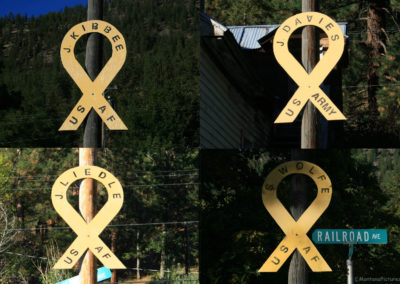 92510 alberon ribbons_MontanaPictures_Net