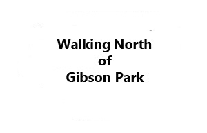 Gibson_NORTH_Direction_BUTTON_MontanaPictures_Net
