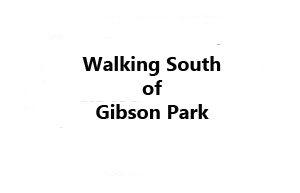 Gibson_SOUTH_Direction_BUTTON_MontanaPictures_Net