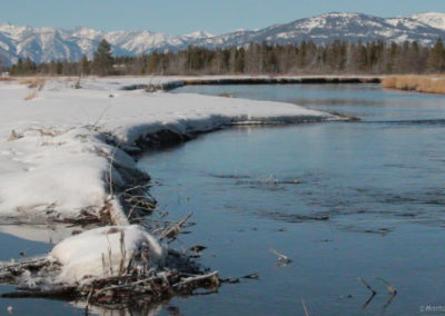 111514 madison river walk_1080_montanapictures_net