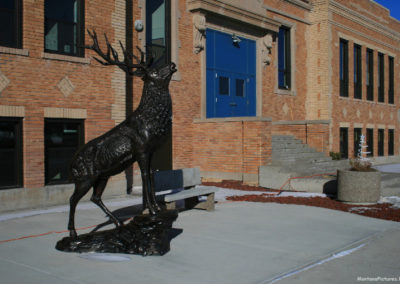 122609 augusta elk 3271 statue_MontanaPictures_Net
