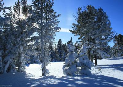 12408 show lkout snow 3562_MontanaPictures_Net