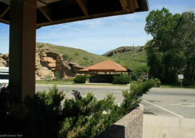 62008 armington 4879 canopy_MontanaPictures_Net