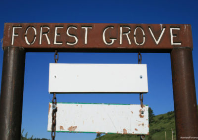 62610 forest grove banner 6567_MontanaPictures_Net