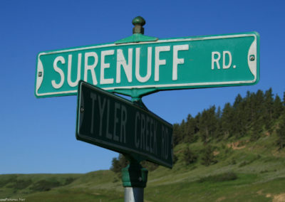 62610 forest grove surenuff 6532_MontanaPictures_Net