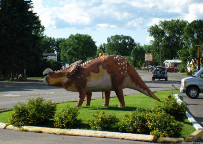 70504 choteau tritops 7316 dino_MontanaPictures_Net