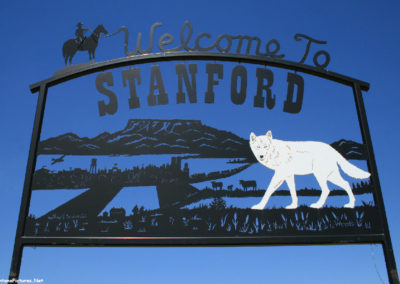 71611 stanford am welcome 9792 wolf_MontanaPictures_Net