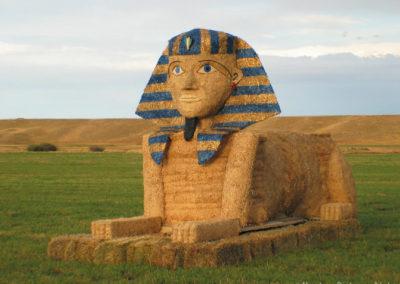 91804 hobson hay sphinx 0420_MontanaPictures_Net