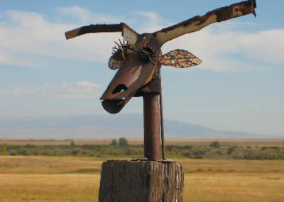 92604 hobson thirteen longhorn_MontanaPictures_Net