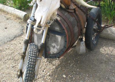 61904 alzada skull bike 5569_MontanaPictures_Net