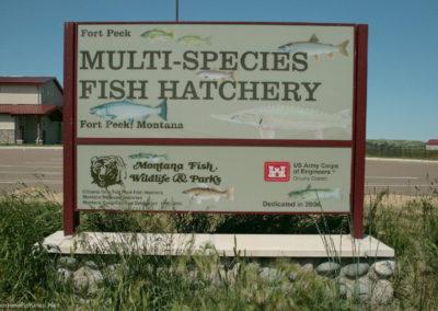 62511 ft peck hatchery 5391_MontanaPictures_Net
