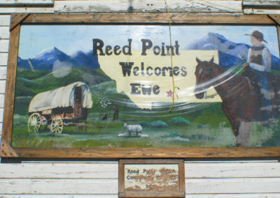 61304 reed pt welcome ewe_MontanaPictures_Net
