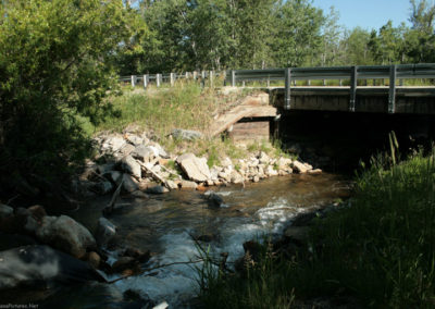 71112 Luther RL rosebud 9725 bridge_MontanaPictures_Net