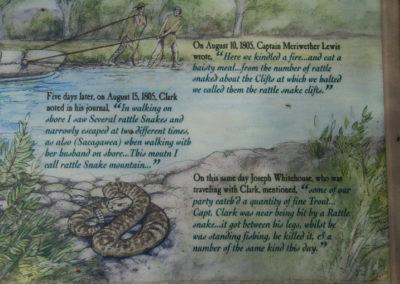 71607 barrett rock rattlesnake close 5762 sign_MontanaPictures_Net