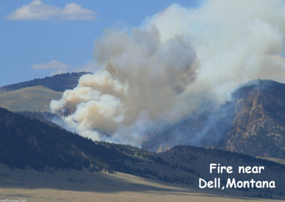 71807 Lima dell fire 7774_MontanaPictures_Net