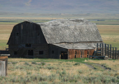 71807 Stage blacktail 4wing barn corner 7266_MontanaPictures_Net