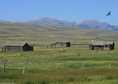 71807 monida ranch buildings 7510_MontanaPictures_Net