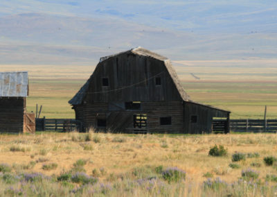 71807 stage am 4wing barn front 7286_MontanaPictures_Net